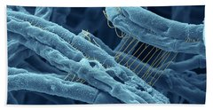 Anthrax Bacteria Sem Hand Towel by Eye Of Science and Photo Researchers
