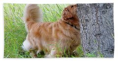 Anticipation Bath Towel