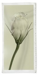 Antique Floral Showcard Bath Towel