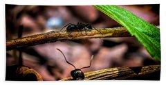 Ants Adventure Hand Towel