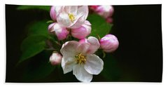 Apple Blossom Time Hand Towel by Trey Foerster