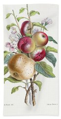 Apple Tree Hand Towel by JB Pointel du Portail