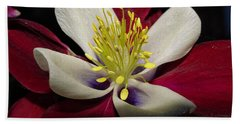 Aquilegia  Columbine Bath Towel