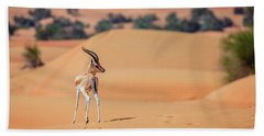 Hand Towel featuring the photograph Arabian Gazelle by Alexey Stiop