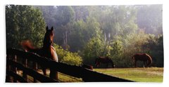 Arabian Horses In Field Bath Towel