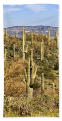 Arizona Desert Bath Towel