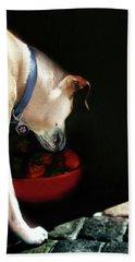 Art By Cooper 3 Hand Towel