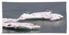 Arctic Terns On A Bergy Bit Bath Towel