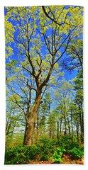 Artsy Tree Series, Early Spring - # 04 Bath Towel