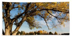 Hand Towel featuring the photograph Soccer Tree by Bill Kesler
