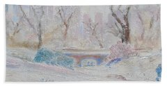 Central Park Record Early March Cold Circa 2007 Bath Towel