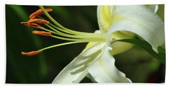 Asiatic Lily No 3 Hand Towel