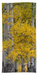 Aspen Bouquet Bath Towel
