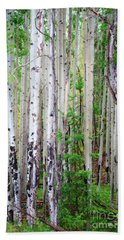 Aspen Grove In The White Mountains Hand Towel