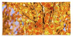 Bath Towel featuring the photograph Aspen Of Many Colors by Stephen Johnson