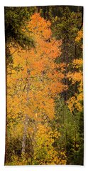 Aspen Bath Towel