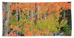 Hand Towel featuring the photograph Aspen Stoplight by David Chandler