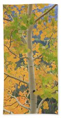 Hand Towel featuring the photograph Aspen Watching You by David Chandler