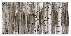 Aspens In Winter Panorama - Colorado Bath Towel by Brian Harig
