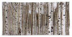 Aspens In Winter Panorama - Colorado Hand Towel