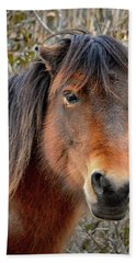 Assateague Island Pony Patricia Irene Hand Towel