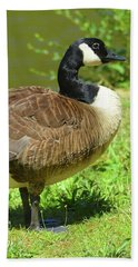 Bath Towel featuring the photograph At A Standstill by Kathy Kelly