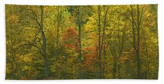 At The Edge Of The Forest Hand Towel