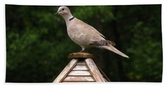 At The Top Of The Bird Feeder Hand Towel by Donna Brown