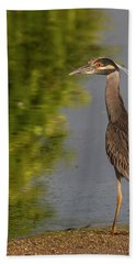 Attentive Heron Hand Towel by Jean Noren