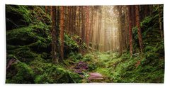Attractive Pathway In Saxon Switzerland Bath Towel