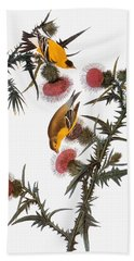 Audubon: Goldfinch Bath Towel