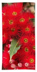 Australian Red Eucalyptus Flowers Hand Towel by Joy Watson