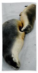 Australian Sea Lions Bath Towel