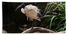 Australian White Ibis Bath Towel