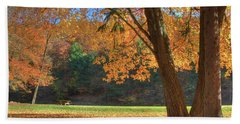 Hand Towel featuring the photograph Autumn At Lykens Glen by Lori Deiter