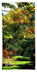 Hand Towel featuring the photograph Autumn Backyard by Joan  Minchak