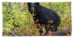 Autumn Bear Bath Towel
