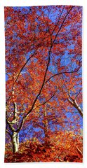 Hand Towel featuring the photograph Autumn Blaze by Karen Wiles