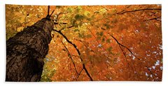Autumn Canopy In Maine Bath Towel