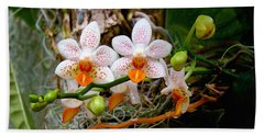 Bath Towel featuring the photograph Autumn Colored Orchids by Sue Melvin