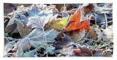 Hand Towel featuring the photograph Autumn Ends, Winter Begins 3 by Linda Lees