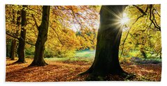 Autumn Evening In Saxony Hand Towel