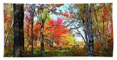 Bath Towel featuring the photograph Autumn Forest by Debbie Oppermann