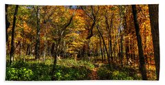 Autumn Forest Path At Johnson's Mound Hand Towel