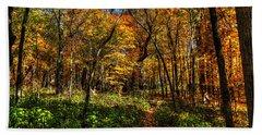 Autumn Forest Path At Johnson's Mound Bath Towel