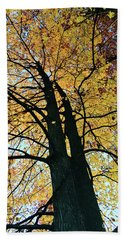 Autumn Glory Hand Towel