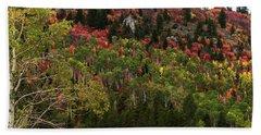 Autumn In Idaho Hand Towel by Yeates Photography