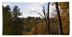 Autumn In The Hills Hand Towel by Lois Lepisto