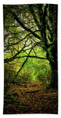 Hand Towel featuring the photograph Autumn Light by David Patterson
