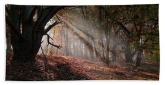 Autumn Light  Hand Towel by Scott Carruthers